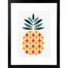 borduurpakket abstract, ananas