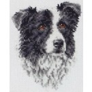 borduurpakket border collie